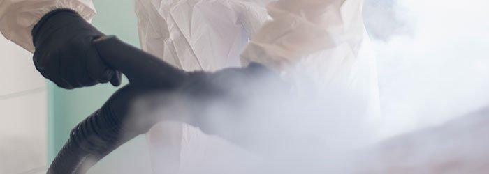 exterminació de xinxes per calor